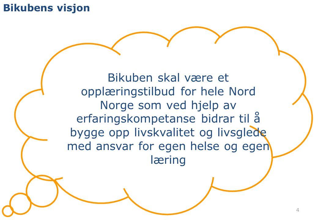 Bikubens visjon 4 Bikuben skal være et opplæringstilbud for hele Nord Norge som ved hjelp av erfaringskompetanse bidrar til å bygge opp livskvalitet o