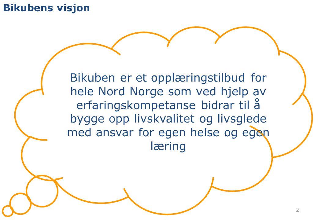 Bikubens visjon 2 Bikuben er et opplæringstilbud for hele Nord Norge som ved hjelp av erfaringskompetanse bidrar til å bygge opp livskvalitet og livsglede med ansvar for egen helse og egen læring