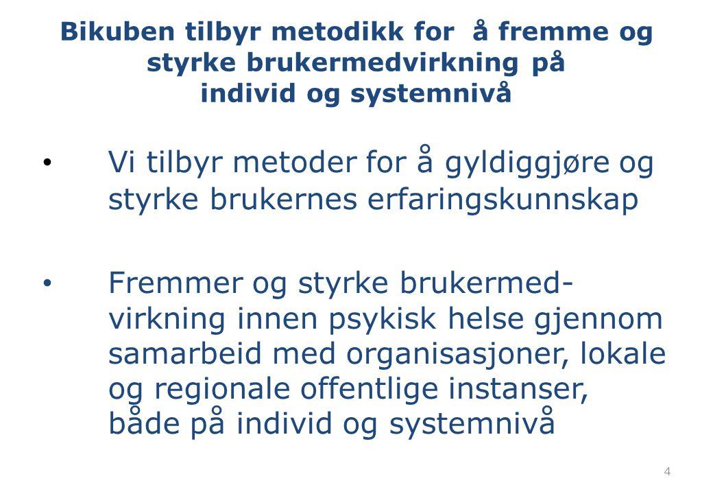 Bikuben tilbyr metodikk for å fremme og styrke brukermedvirkning på individ og systemnivå Vi tilbyr metoder for å gyldiggjøre og styrke brukernes erfa