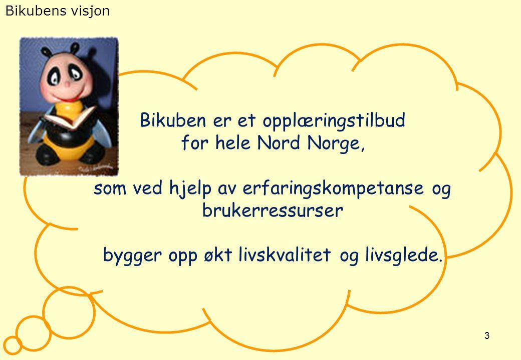 3 Bikubens visjon Bikuben er et opplæringstilbud for hele Nord Norge, som ved hjelp av erfaringskompetanse og brukerressurser bygger opp økt livskvali