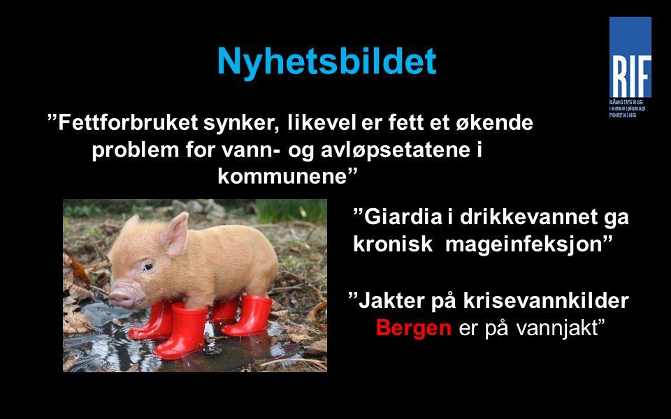 """Nyhetsbildet """"Fettforbruket synker, likevel er fett et økende problem for vann- og avløpsetatene i kommunene"""" """"Jakter på krisevannkilder Bergen er på"""