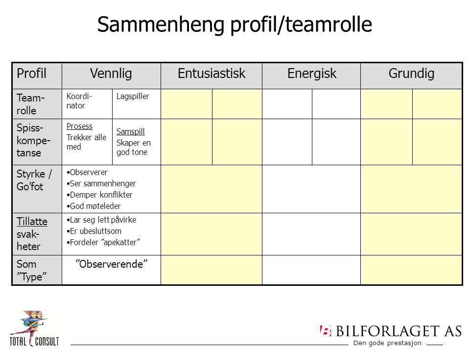 """Den gode prestasjon Sammenheng profil/teamrolle ProfilGrundigEnergiskEntusiastiskVennlig Som """"Type"""" """"Observerende"""" Tillatte svak- heter Lar seg lett p"""