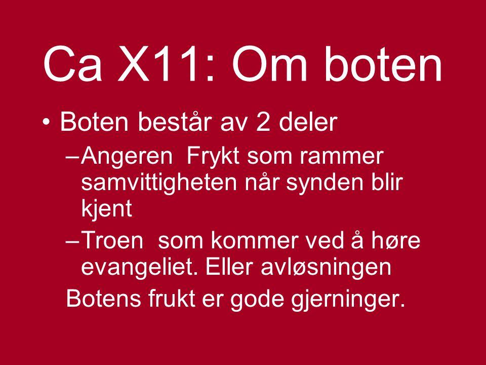 Skriftemålet CA X1 og XXV Dens betydning Motivasjonen for skriftemålet Og hvordan det skulle fungere