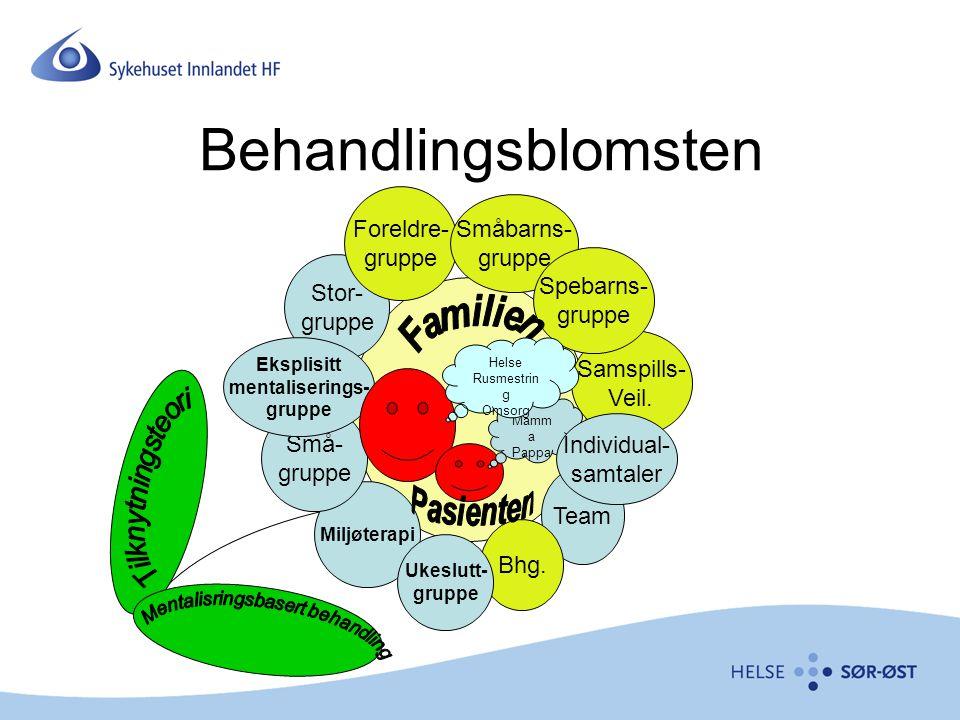 Mentalisering Forstå seg selv utenfra og andre innenfra Tenke om følelser, og føle om tanker Gi følelser og opplevelser et språk Minding the baby Refleksjon, undring, speiling, nysgjerrighet