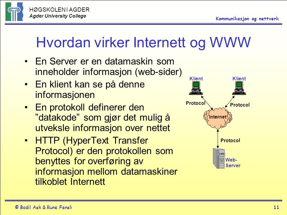 HØGSKOLEN I AGDER Agder University College © Bodil Ask & Rune Fensli11 Kommunikasjon og nettverk Hvordan virker Internett og WWW En Server er en datam