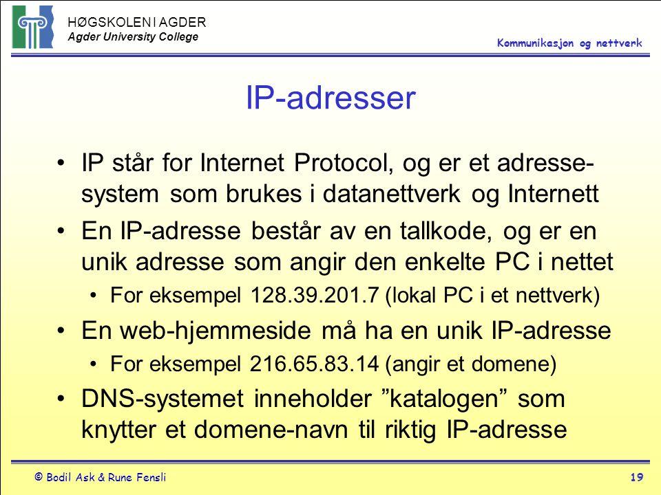 HØGSKOLEN I AGDER Agder University College © Bodil Ask & Rune Fensli19 Kommunikasjon og nettverk IP-adresser IP står for Internet Protocol, og er et a
