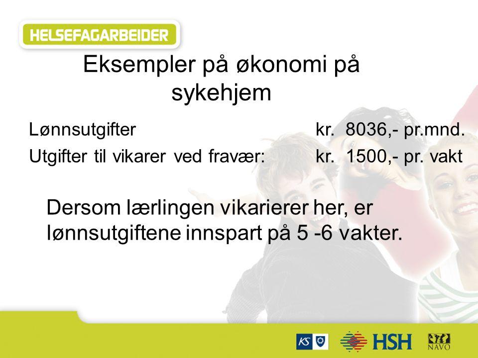 Eksempler på økonomi på sykehjem Lønnsutgifter kr.