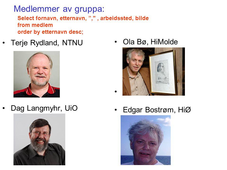 """Medlemmer av gruppa: Terje Rydland, NTNU Dag Langmyhr, UiO Ola Bø, HiMolde Edgar Bostrøm, HiØ Select fornavn, etternavn, """","""