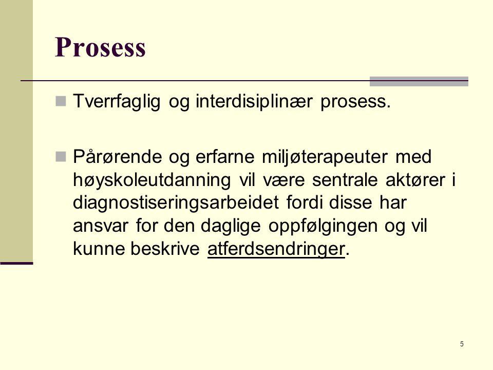 Prosess Tverrfaglig og interdisiplinær prosess.