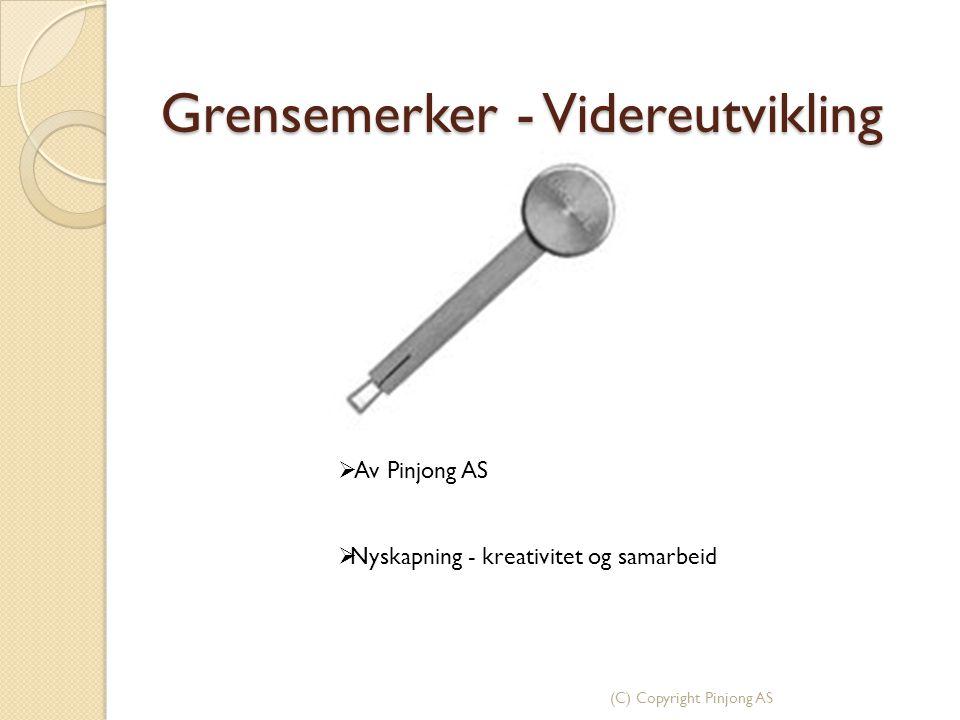 (C) Copyright Pinjong AS Grensemerker - Videreutvikling  Av Pinjong AS  Nyskapning - kreativitet og samarbeid