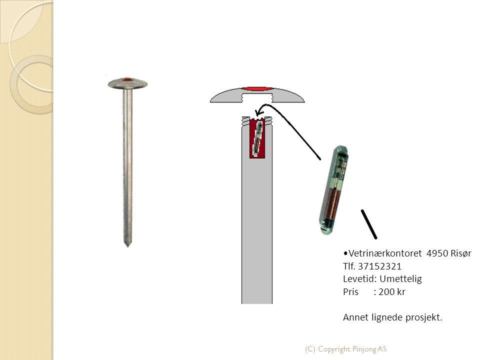 (C) Copyright Pinjong AS Vetrinærkontoret 4950 Risør Tlf. 37152321 Levetid: Umettelig Pris : 200 kr Annet lignede prosjekt.