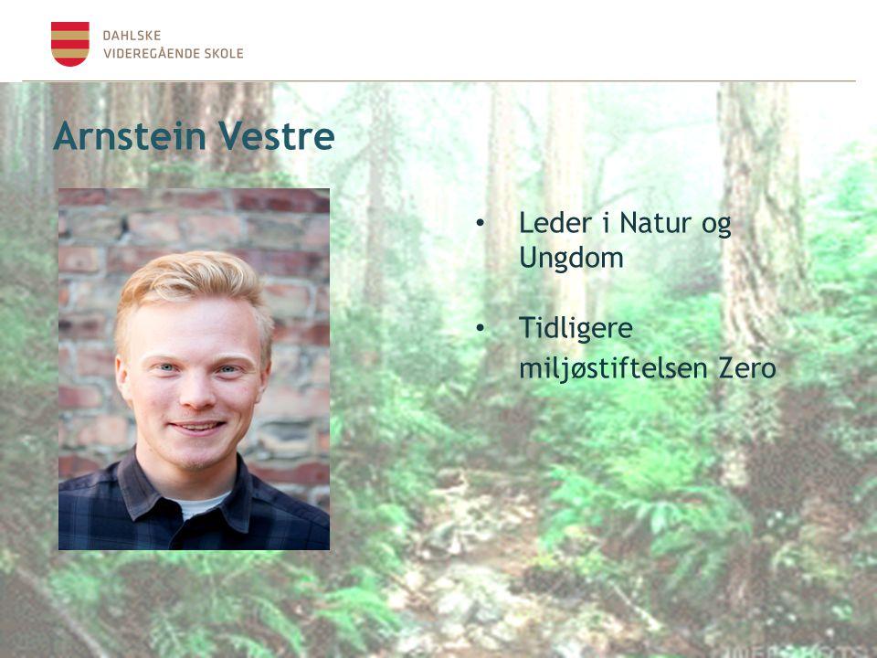 Arnstein Vestre Leder i Natur og Ungdom Tidligere miljøstiftelsen Zero