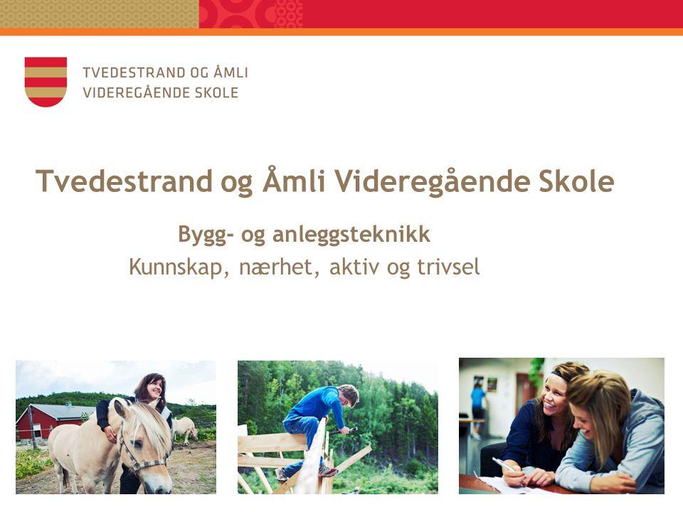 Tvedestrand og Åmli Videregående Skole Bygg- og anleggsteknikk Kunnskap, nærhet, aktiv og trivsel