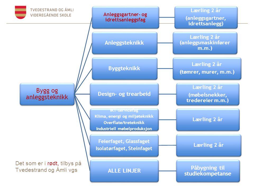 Bygg og anleggsteknikk Anleggsgartner- og idrettsanleggsfag Lærling 2 år (anleggsgartner, idrettsanlegg) Anleggsteknikk Lærling 2 år (anleggsmaskinfør