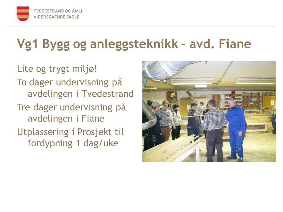 Vg1 Bygg og anleggsteknikk – avd. Fiane Lite og trygt miljø! To dager undervisning på avdelingen i Tvedestrand Tre dager undervisning på avdelingen i