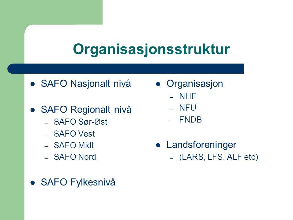 Organisasjonsstruktur SAFO Nasjonalt nivå SAFO Regionalt nivå – SAFO Sør-Øst – SAFO Vest – SAFO Midt – SAFO Nord SAFO Fylkesnivå Organisasjon – NHF –