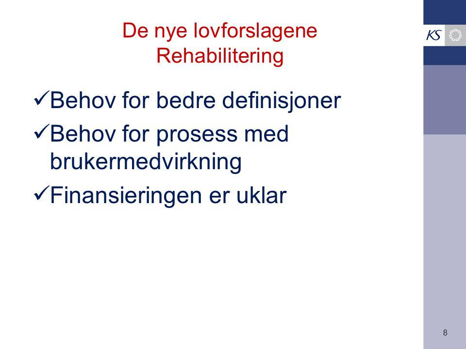 8 De nye lovforslagene Rehabilitering Behov for bedre definisjoner Behov for prosess med brukermedvirkning Finansieringen er uklar