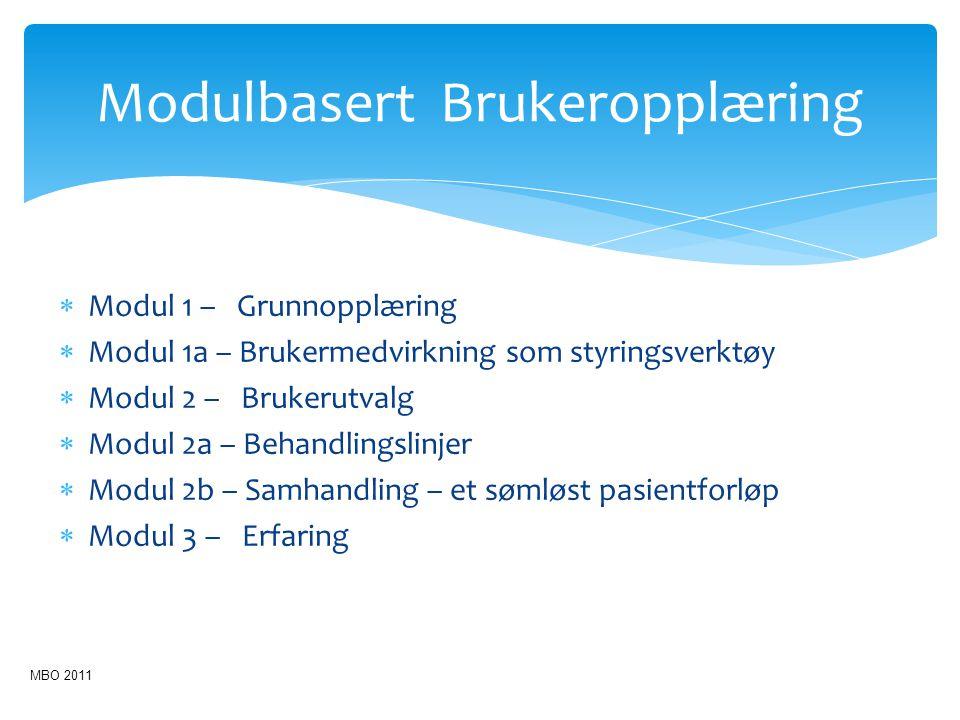  Modul 1 – Grunnopplæring  Modul 1a – Brukermedvirkning som styringsverktøy  Modul 2 – Brukerutvalg  Modul 2a – Behandlingslinjer  Modul 2b – Sam