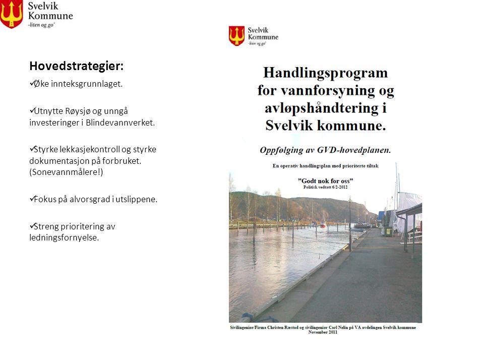 Hovedstrategier: Øke innteksgrunnlaget. Utnytte Røysjø og unngå investeringer i Blindevannverket. Styrke lekkasjekontroll og styrke dokumentasjon på f