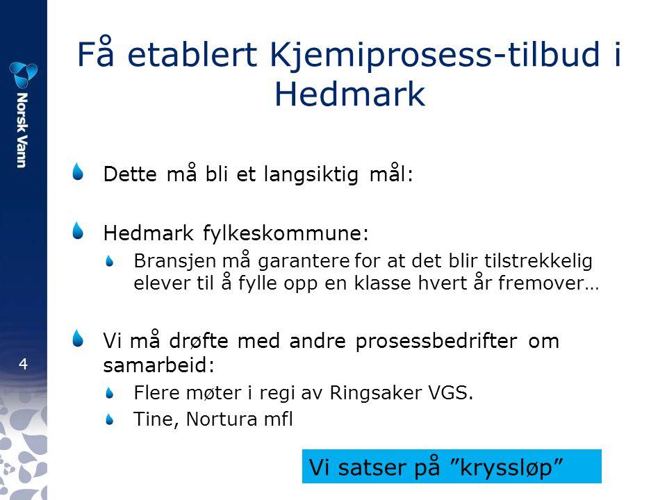 4 Få etablert Kjemiprosess-tilbud i Hedmark Dette må bli et langsiktig mål: Hedmark fylkeskommune: Bransjen må garantere for at det blir tilstrekkelig