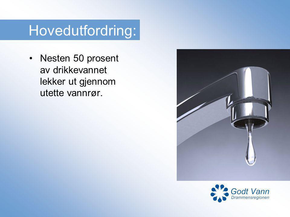 Mål for samarbeidsprosjektet Redusere lekkasje av drikkevann Forhindre at overvann overbelaster avløpsnettet Forhindre at avløpsvann forurenser drikkevannet og vassdragene Forebygge vannskader og sette i verk flomsikringstiltak