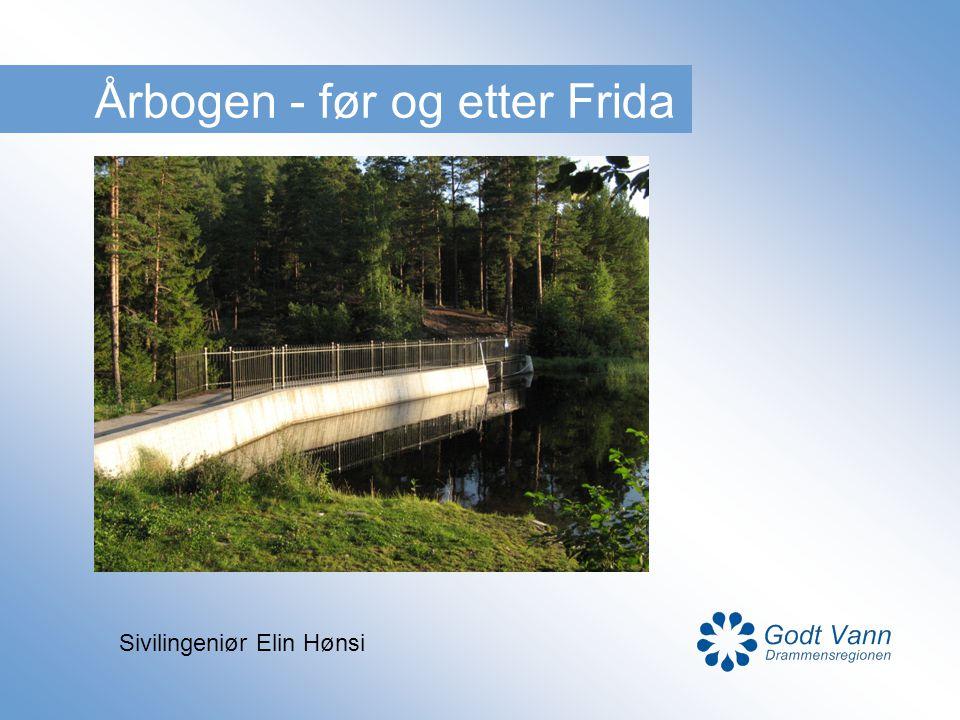 Årbogen - før og etter Frida Sivilingeniør Elin Hønsi
