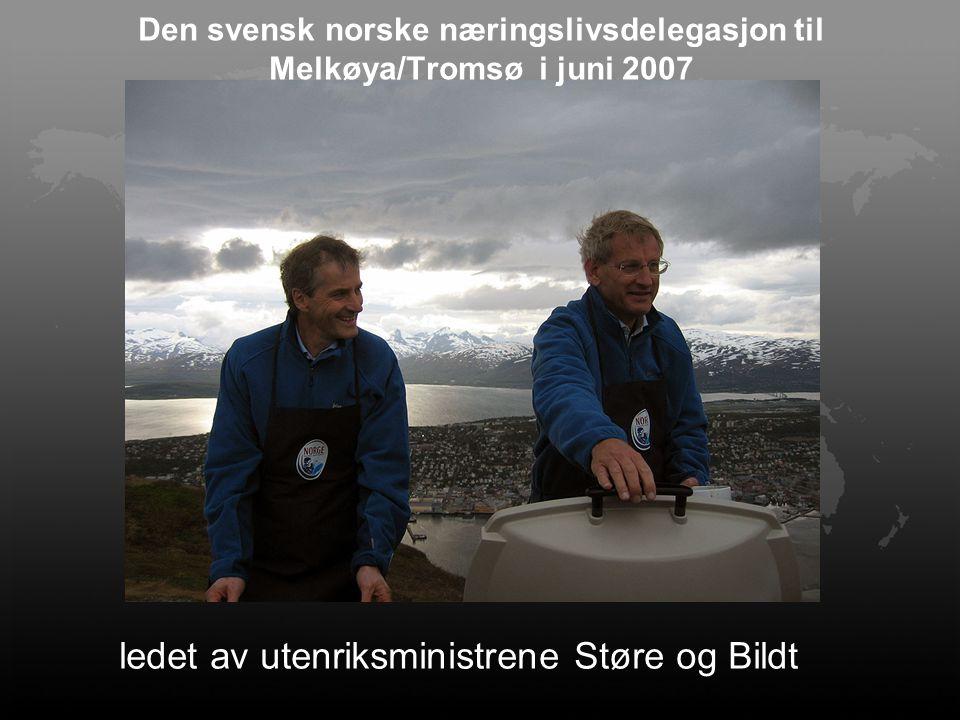 Den svensk norske næringslivsdelegasjon til Melkøya/Tromsø i juni 2007 ledet av utenriksministrene Støre og Bildt