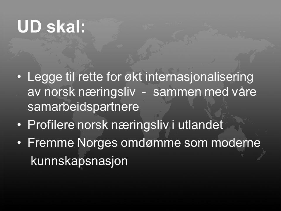 UD skal: Legge til rette for økt internasjonalisering av norsk næringsliv - sammen med våre samarbeidspartnere Profilere norsk næringsliv i utlandet F