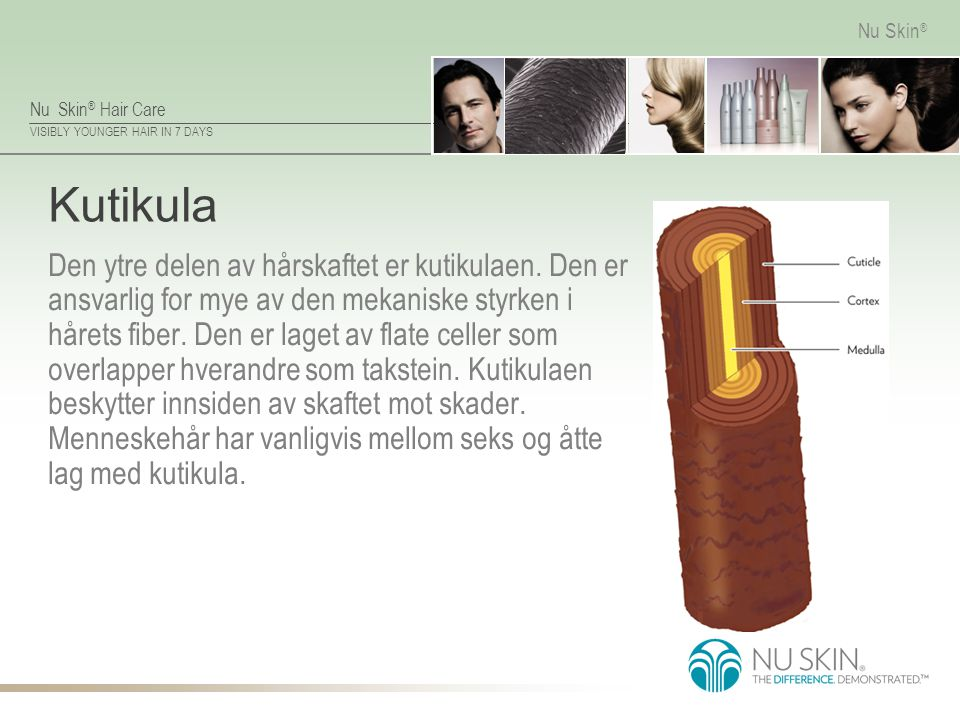 Nu Skin ® Hair Care VISIBLY YOUNGER HAIR IN 7 DAYS Nu Skin ® Kutikula Den ytre delen av hårskaftet er kutikulaen. Den er ansvarlig for mye av den meka