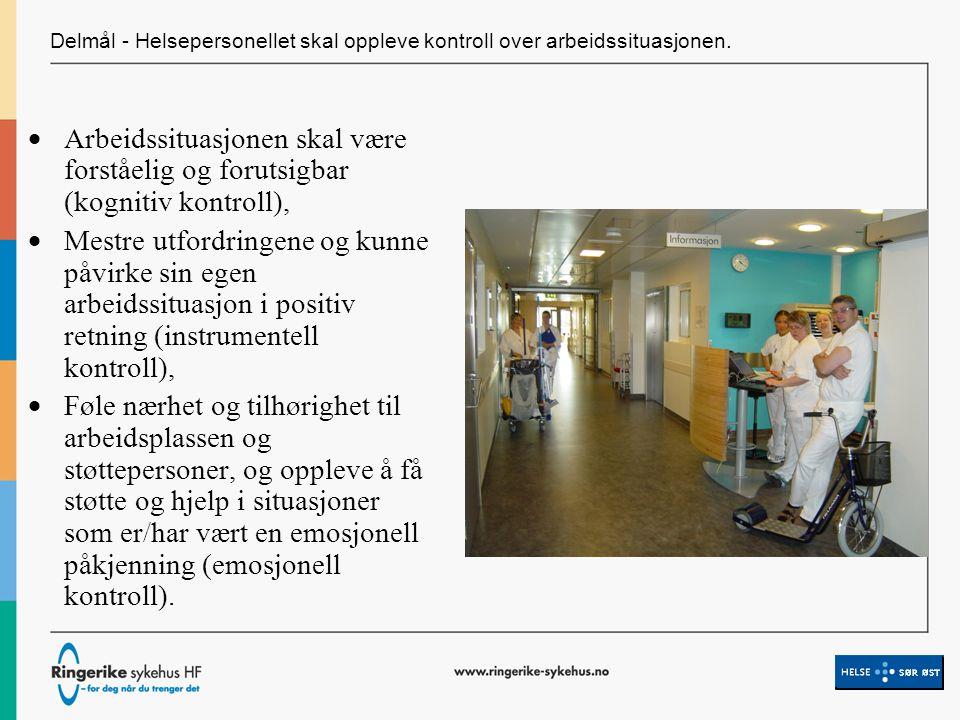 Delmål - Helsepersonellet skal oppleve kontroll over arbeidssituasjonen.