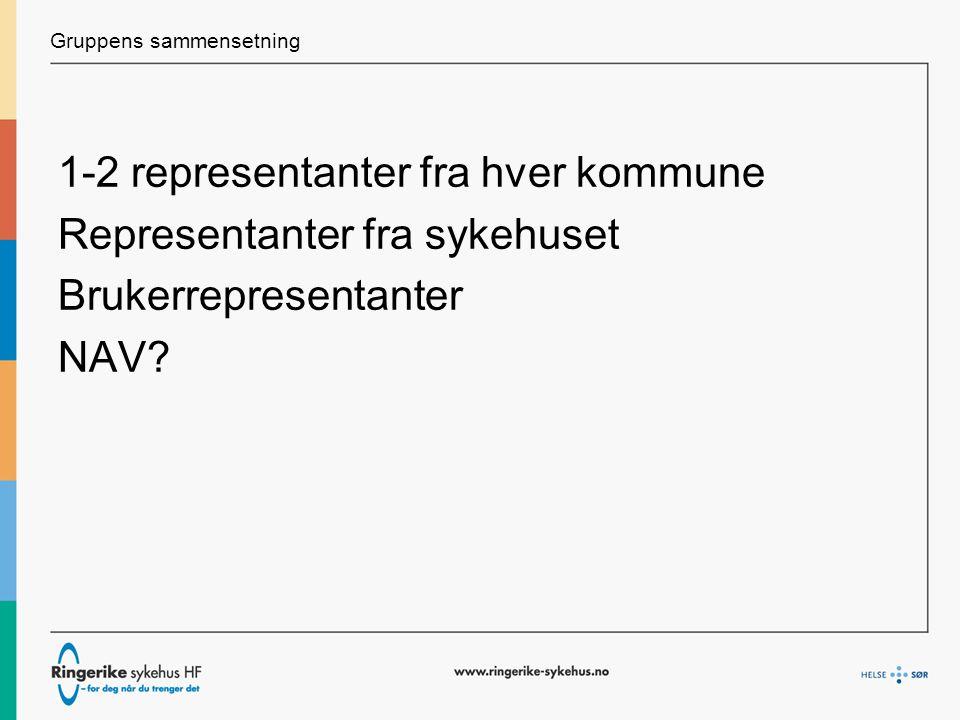 Gruppens sammensetning 1-2 representanter fra hver kommune Representanter fra sykehuset Brukerrepresentanter NAV