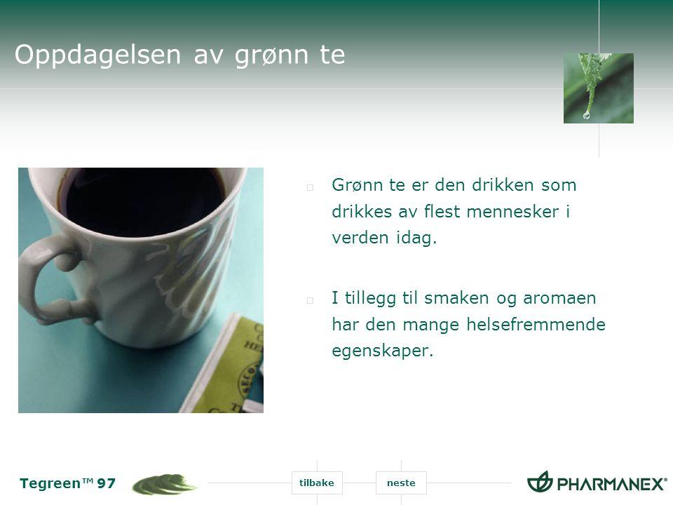 Tegreen™ 97 tilbakeneste Oppdagelsen av grønn te  Grønn te er den drikken som drikkes av flest mennesker i verden idag.  I tillegg til smaken og aro