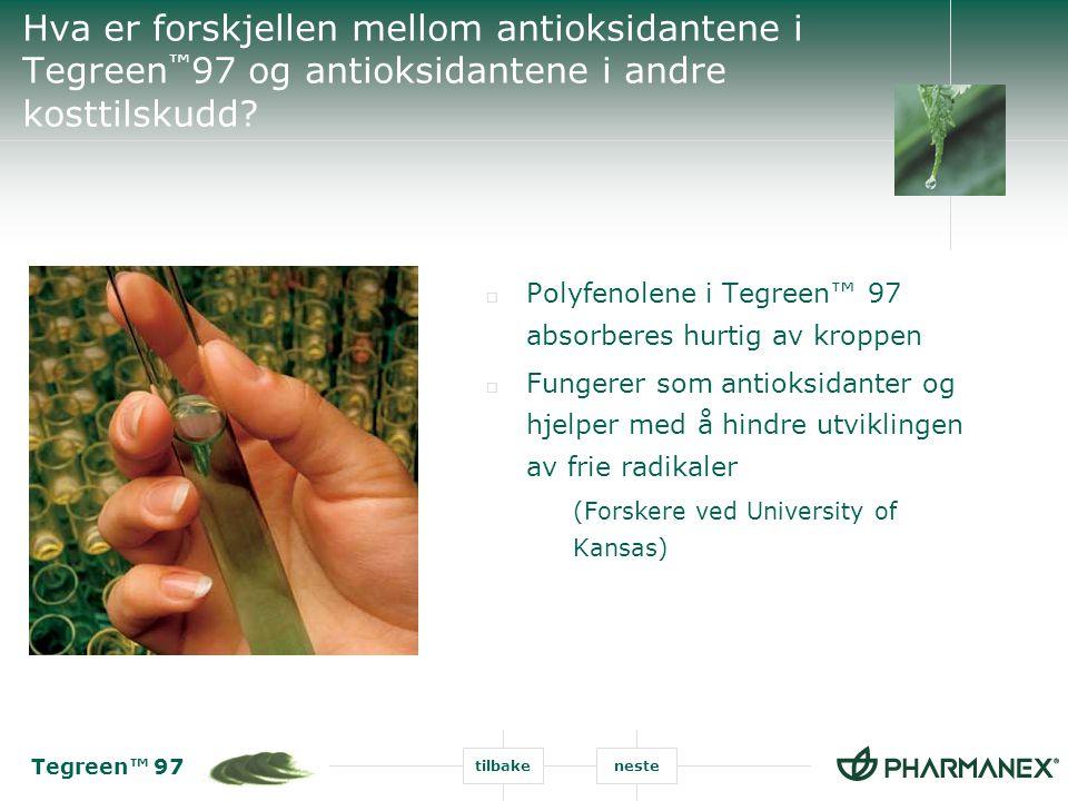 Tegreen™ 97 tilbakeneste Hva er forskjellen mellom antioksidantene i Tegreen ™ 97 og antioksidantene i andre kosttilskudd?  Polyfenolene i Tegreen™ 9