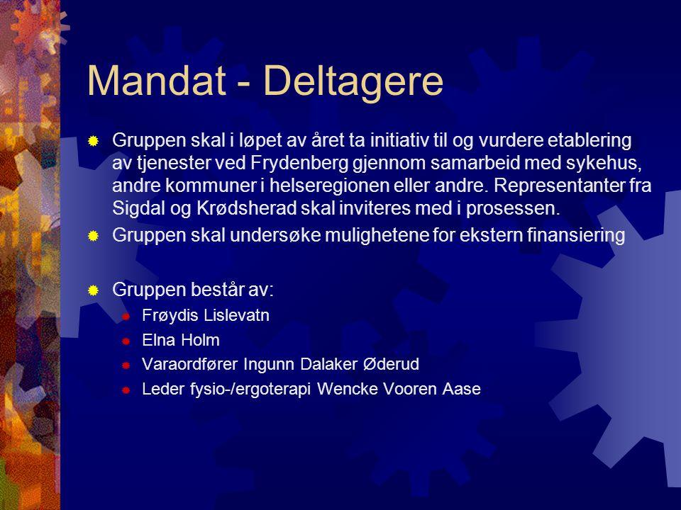 Mandat - Deltagere  Gruppen skal i løpet av året ta initiativ til og vurdere etablering av tjenester ved Frydenberg gjennom samarbeid med sykehus, andre kommuner i helseregionen eller andre.