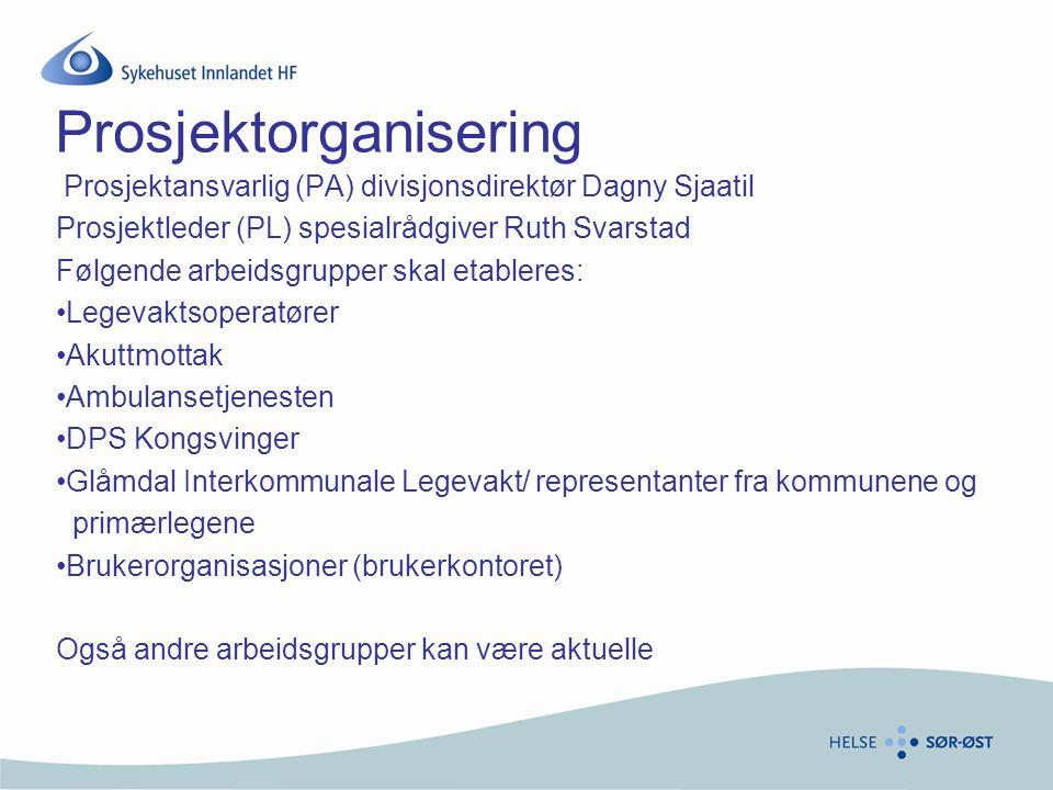 Prosjektorganisering Prosjektansvarlig (PA) divisjonsdirektør Dagny Sjaatil Prosjektleder (PL) spesialrådgiver Ruth Svarstad Følgende arbeidsgrupper s