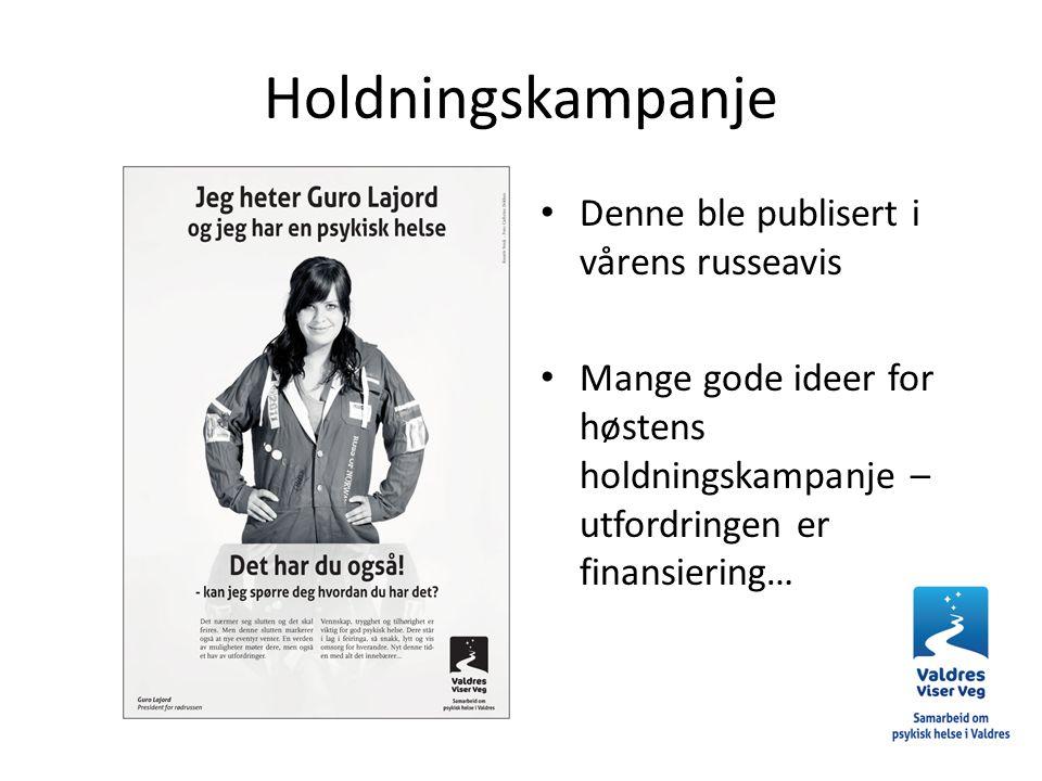 Holdningskampanje Denne ble publisert i vårens russeavis Mange gode ideer for høstens holdningskampanje – utfordringen er finansiering…