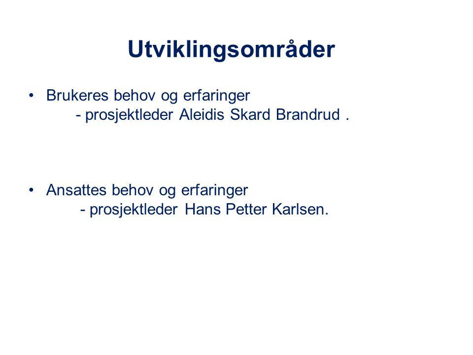 Utviklingsområder Brukeres behov og erfaringer - prosjektleder Aleidis Skard Brandrud. Ansattes behov og erfaringer - prosjektleder Hans Petter Karlse