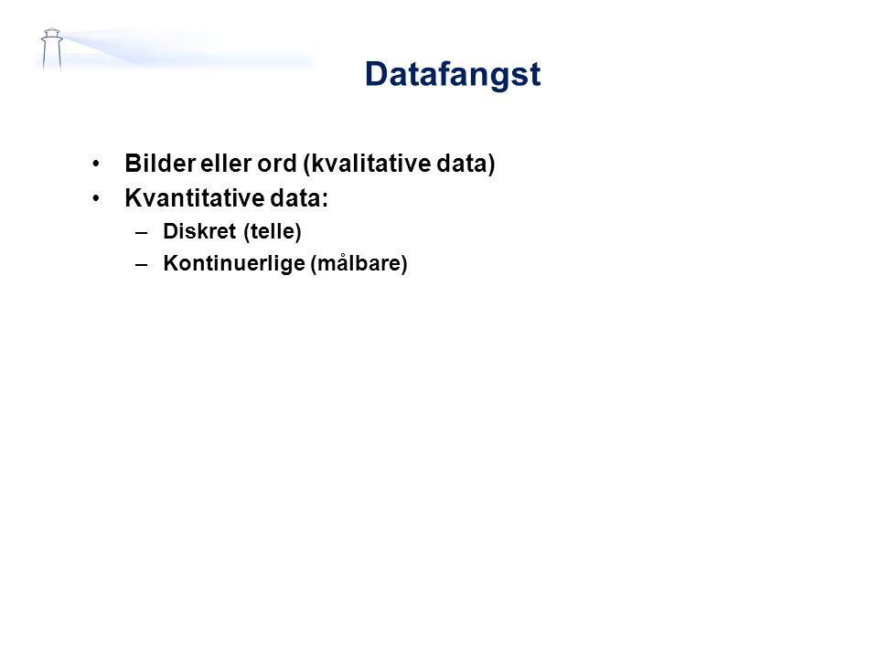 Datafangst Bilder eller ord (kvalitative data) Kvantitative data: –Diskret (telle) –Kontinuerlige (målbare)