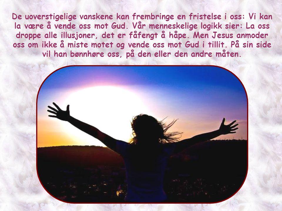 Denne setningen kan også overføres til alle andre forhold i livet, forutsatt at de er i overensstemmelse med Evangeliets utbredelse og menneskenes fre