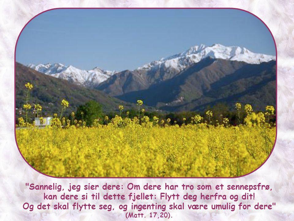 Man tror at Jesus ga disse ordene til disiplene på den tiden de ble sendt ut for å misjonere.