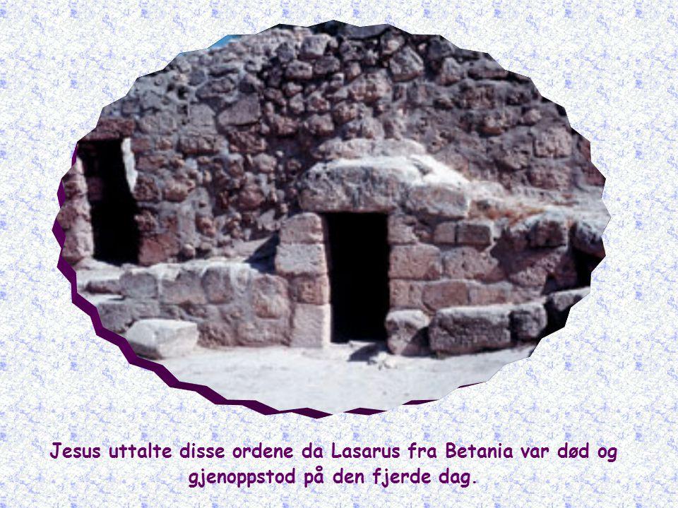 Jesus uttalte disse ordene da Lasarus fra Betania var død og gjenoppstod på den fjerde dag.