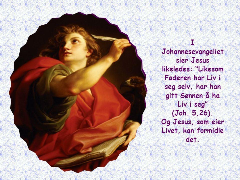 Jesus vil få folk til å forstå hvem han er. Han eier det mest verdifulle gode: Livet, det Livet som ikke dør.