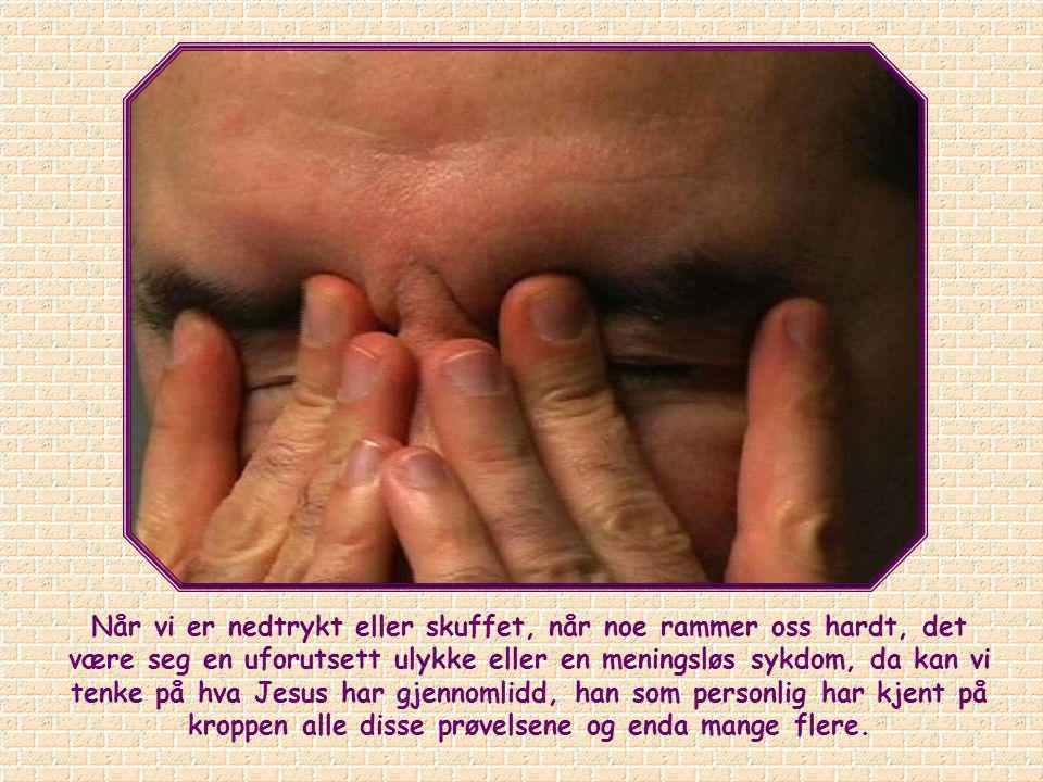 I sin forlatthet har Jesus gjort det mulig for oss å få tilgang til Faderen: Han har gjort sin del. Men for å kunne nyte godt av en slik nåde må hver
