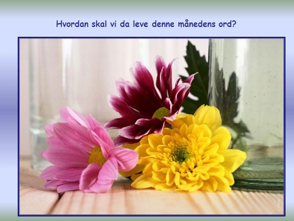 Og må Herren la kjærligheten dere har til hverandre og til alle mennesker, få vokse seg rik og stor!