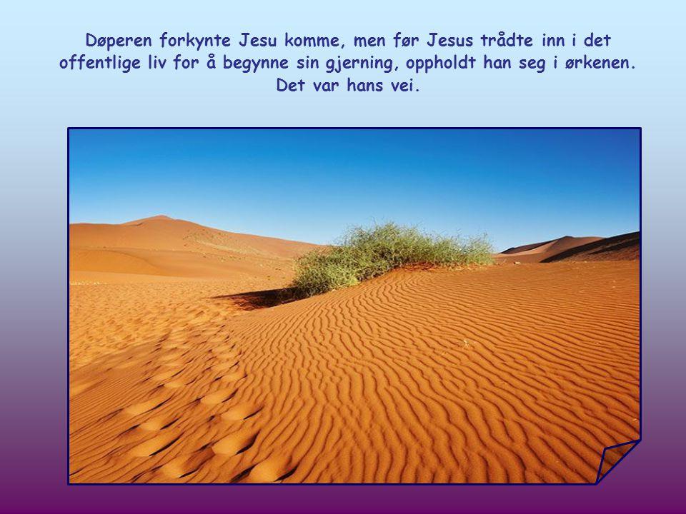 Johannes døperen oppfordrer oss til å rydde vei for Herren. Men hva er så dette for en vei