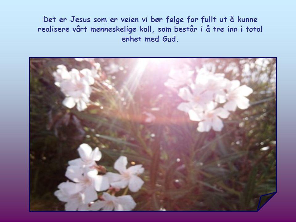 Det er den samme veien vi gjenfinner i Jesu død og oppstandelse.