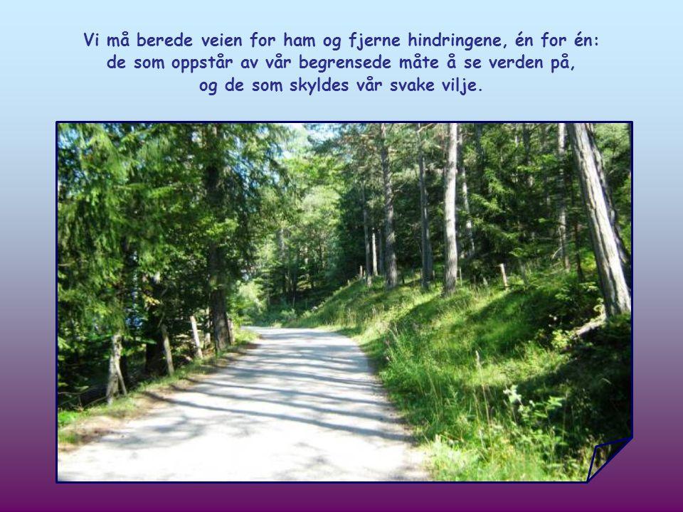 Hver av oss er kalt til å berede veien for Jesus, som ønsker å komme inn i vårt liv.