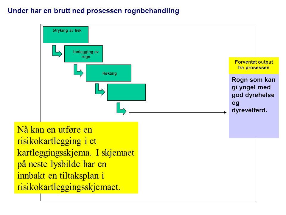 Under har en brutt ned prosessen rognbehandling Stryking av fisk Innlegging av rogn Røkting Forventet output fra prosessen Rogn som kan gi yngel med g