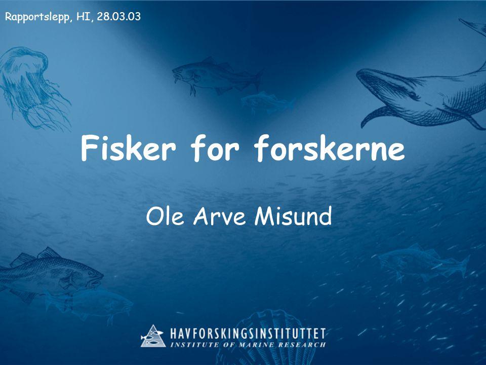 Fisker for forskerne Ole Arve Misund Rapportslepp, HI, 28.03.03