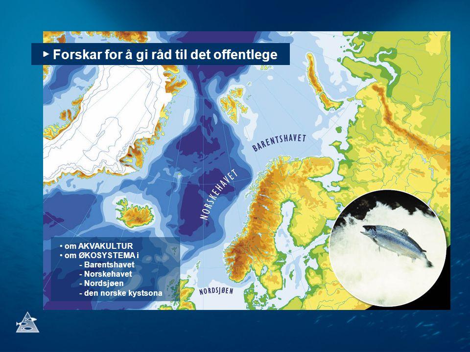 ▶ Forskar for å gi råd til det offentlege om AKVAKULTUR om ØKOSYSTEMA i - Barentshavet - Norskehavet - Nordsjøen - den norske kystsona